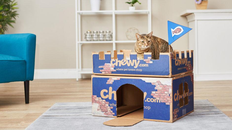 chewy box craft diy