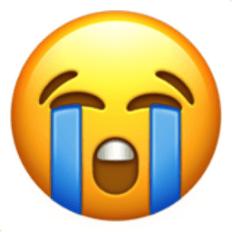 Loudly Crying Face Emoji (U+1F62D)