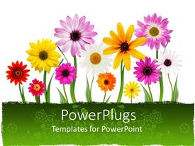 5000+ Spring Summer PowerPoint Templates w/ Spring Summer-Themed ...