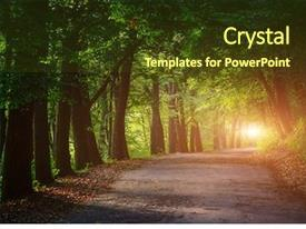 Enchanted Forest PowerPoint Templates w/ Enchanted Forest Themed Backgrounds