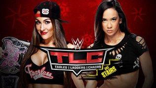 TLC 2014-Nikki vs. AJ