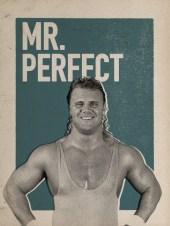 MR PERFECT