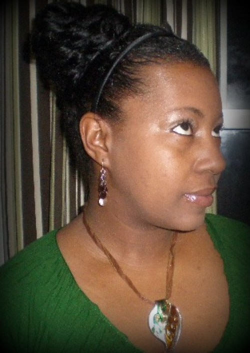 Chic Protective Styled Bun