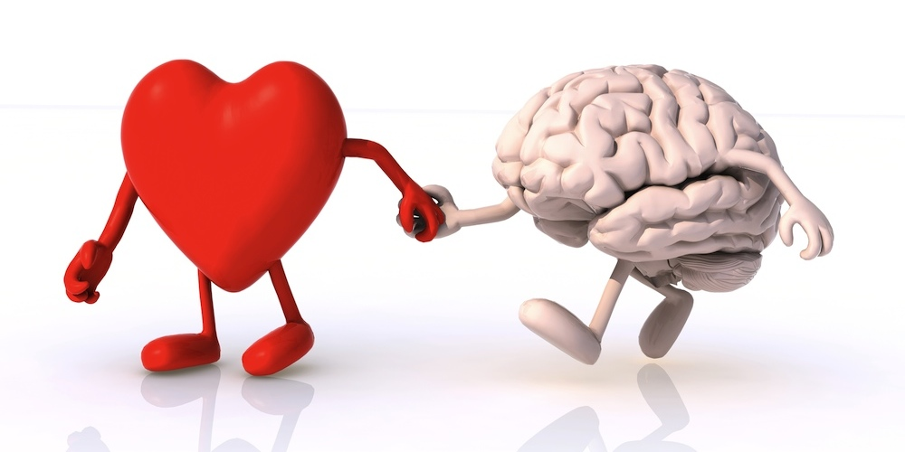 Image result for pictures of the heart and the brain