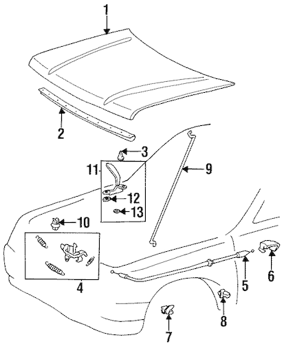 HOOD & COMPONENTS for 1996 Toyota T100