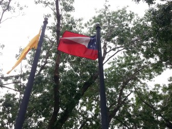 Stars and Bars Confederate Flag Photo by Joey Peters