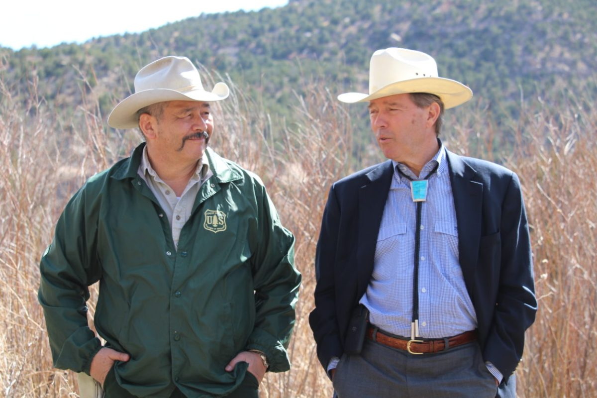 Udall will not run for reelection to U.S. Senate