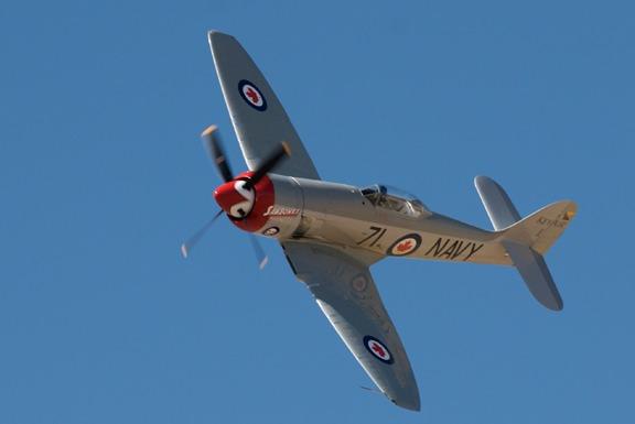 Ray Dieckman in Sawbones - Hawker Sea Fury