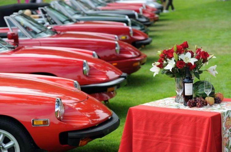 Alfa Romeo Spider Line-up