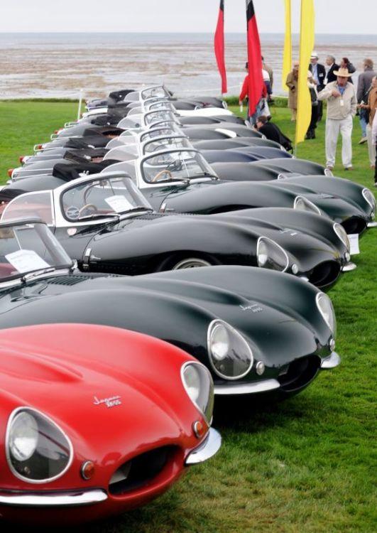 Jaguar XKSS Line-Up