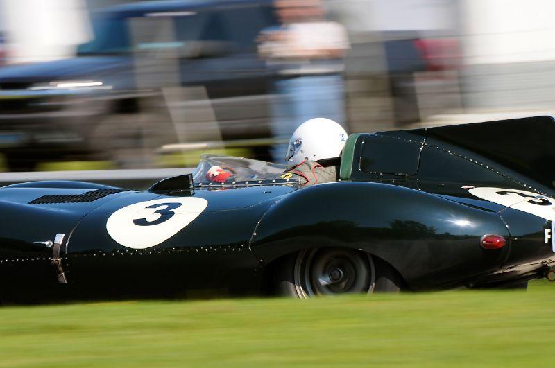 1955 Jaguar D-Type, David Ghose.