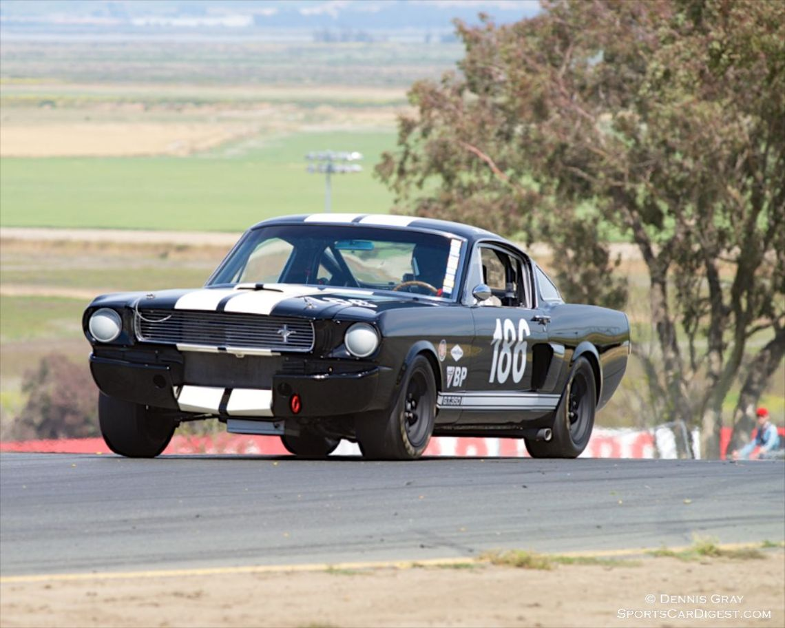 Michael Parsons' 1966 Shelby Mustang GT350