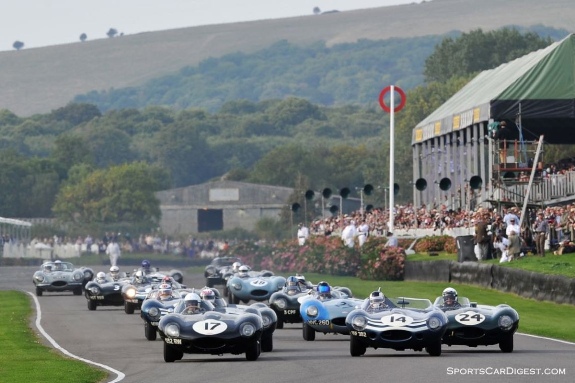 Jaguar D-Type Race - 2014 Goodwood Revival