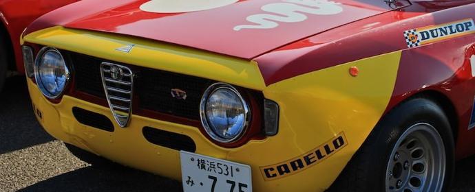 Alfa Romeo GTAm 2012 New Years Meeting