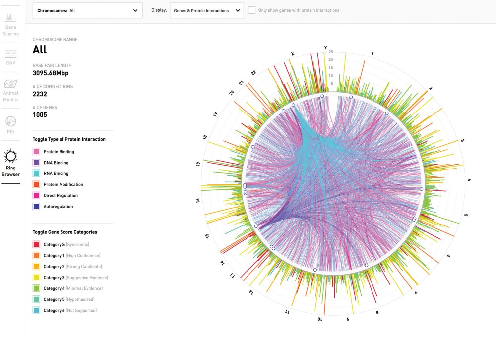 medium resolution of a visualization of the human genetic information contained in the sfari gene database the outer shell displays a curated subset of genes spread across the
