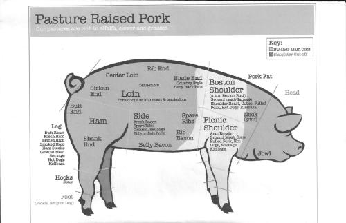 small resolution of  pork cuts chart