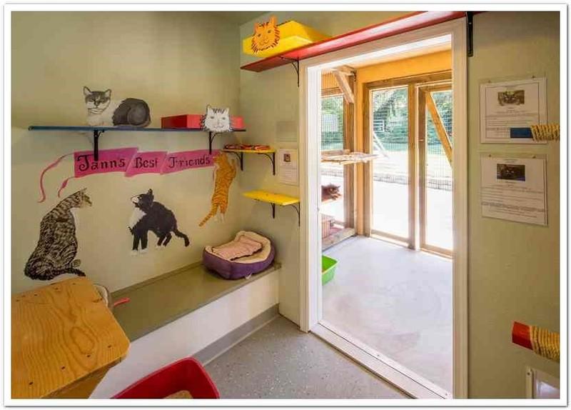 Facility Design And Animal Housing University Of Wisconsin Madison Shelter Medicine Program
