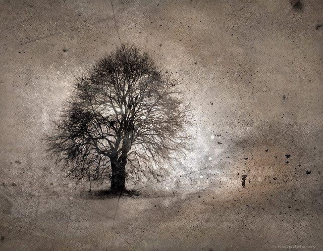 Three Transcendents, part 2: Nature