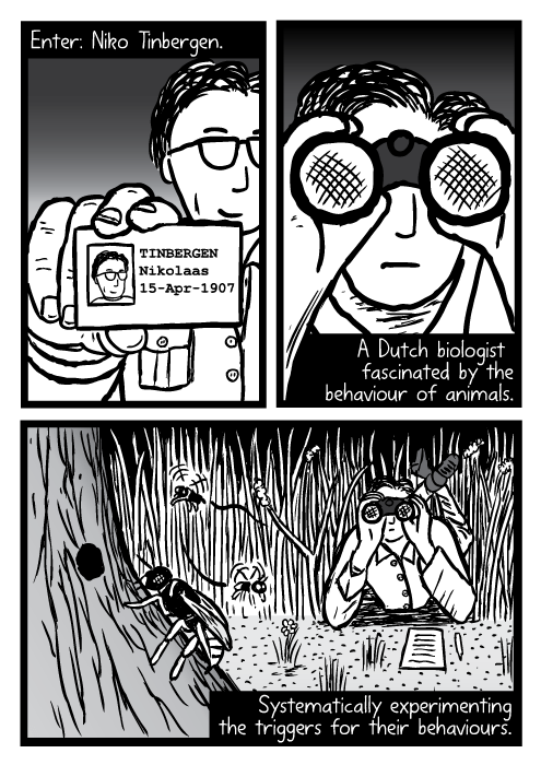 Supernormal stimuli comic - part 4