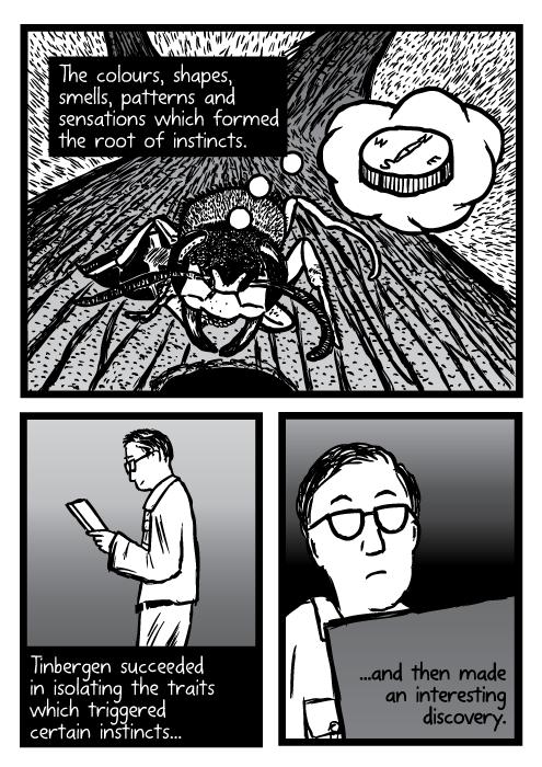 Supernormal stimuli comic - part 5