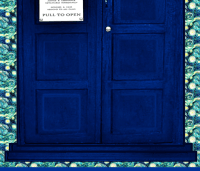 Huge Police Box Door for Curtain Sheet Wall Hanging fabric ...