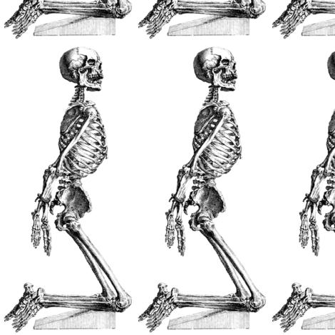 skulls skeletons death prostrate kneeling bondage anatomy