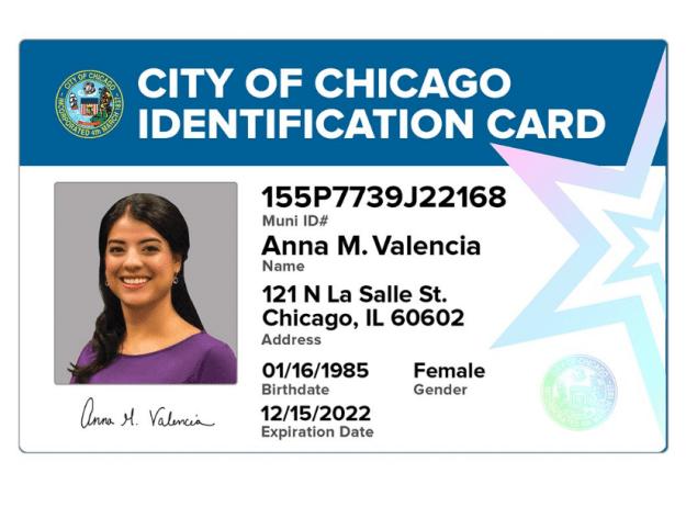 New York Identification Card 2017