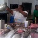 Weighing Sailfish