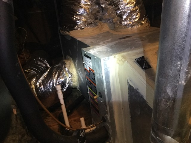 Webster, TX - I'm performing a air-conditioning maintenance on 1Trane unit. Maintenancing the unit to prevent a no cool situation. Checking and servicing the outdoor and indoor components to prevent the unit from running excessively long and not cooling.  Cleaning and sanitizing the drain lines to prevent  excessive water leakage or a drain clog or excessive drip of water flow from the drain line.