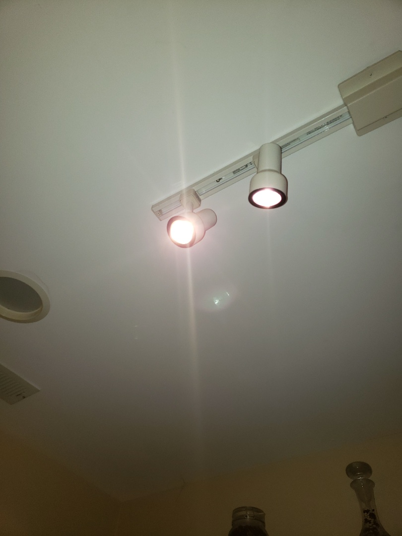 Raleigh, NC - Replace customer supplied light bulbs