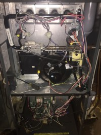 Furnace Motor Not Working - impremedia.net