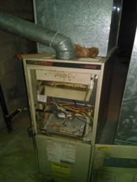 Coleman Furnace Wiring Diagram Coleman Thermostat Diagram ...