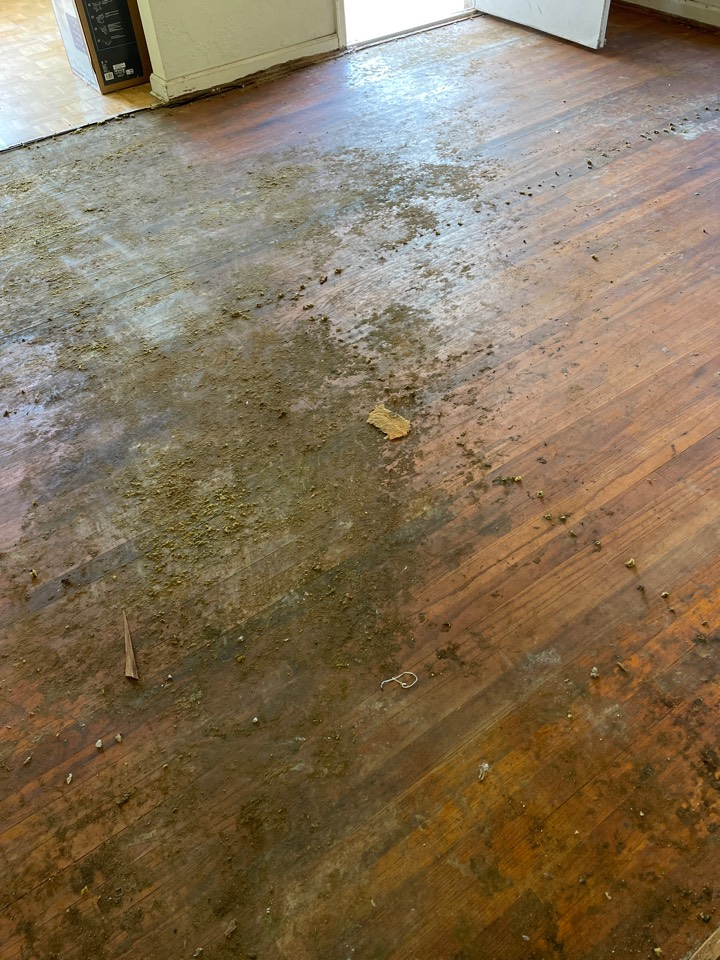 Helping client bring hardwood floors back to life.