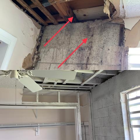 Lauderdale Lakes, FL - Before and after picture of our latest mold remediation done right!