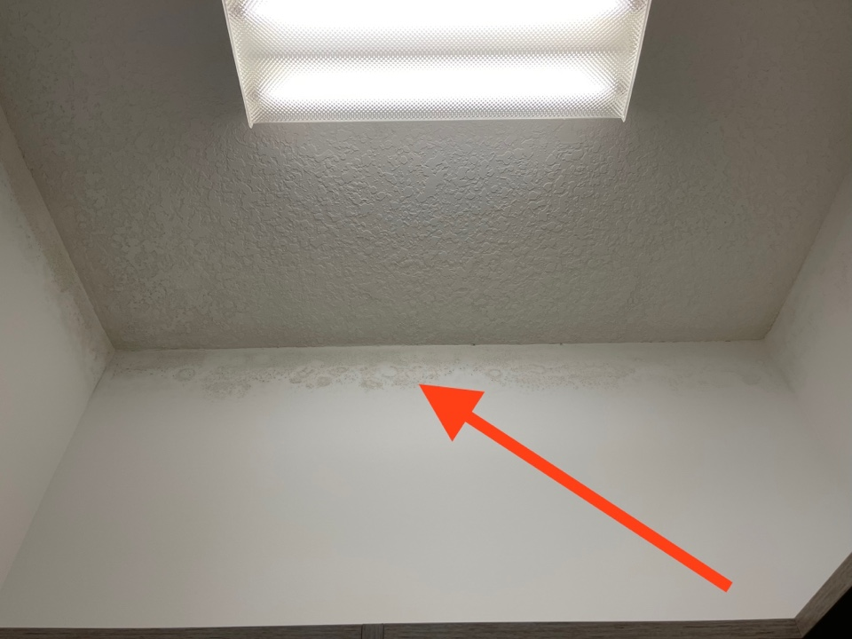 West Palm Beach, FL - Moisture buildup in un ventilated closet! Make sure to have a clear path for air to circulate around all rooms will avoid this problem.