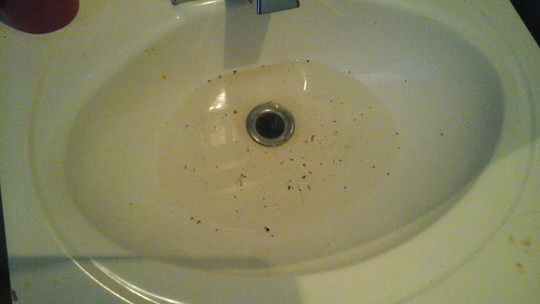 Dallas, TX - Tub faucet replacement and sink stoppage