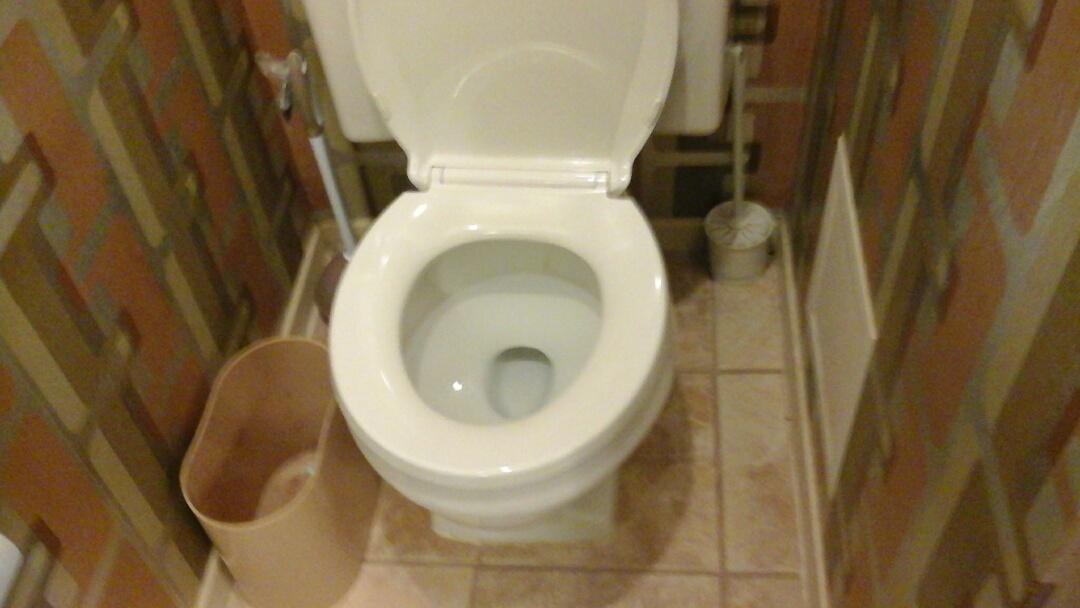 Arlington, TX - Toilet not flushing properly