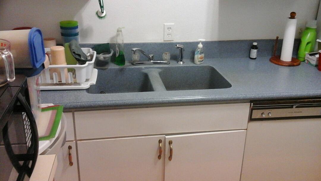 Cedar Hill, TX - Replace garbage disposal