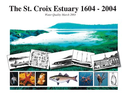 Water Quality History - St. Croix River Estuary