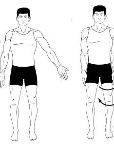 Fig  adduction abduction and rotation also anatomical terms of movement flexion teachmeanatomy rh teachmeanatomyfo