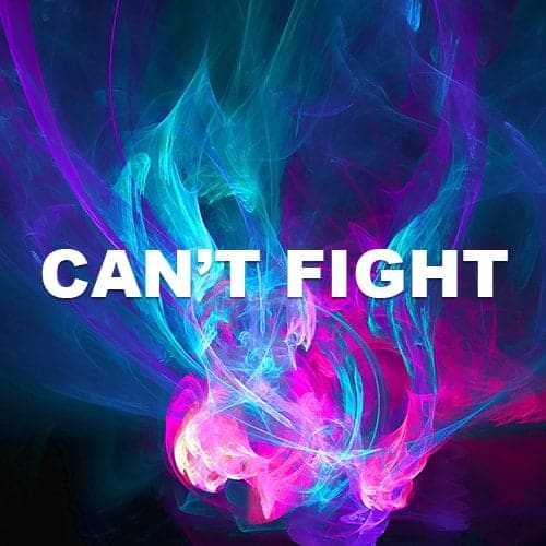 Can't Fight