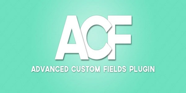 FREE DOWNLOAD ADVANCED CUSTOM FIELDS PRO V5.5.2 WITH ADDONS
