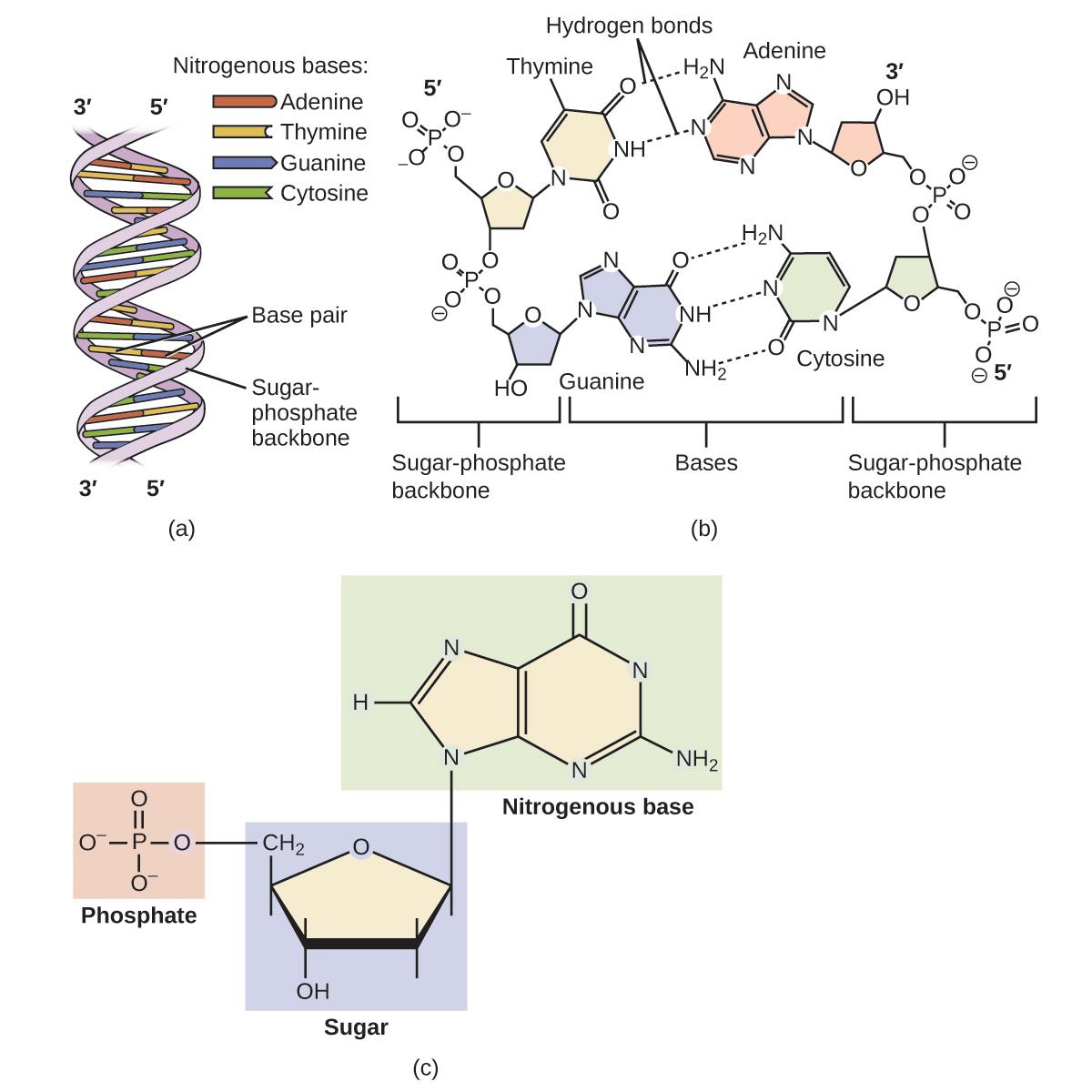 Openstax General Chemistry