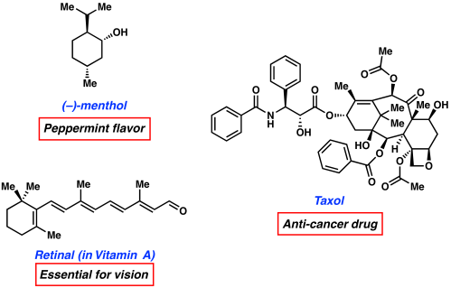 small resolution of when nature constructs terpene natural products it uses a five carbon building block called dimethylallyl pyrophosphate