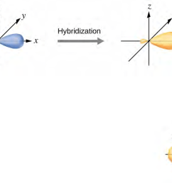hybridization of an s orbital blue and a p orbital red of the same atom produces two sp hybrid orbitals purple each hybrid orbital is oriented  [ 1300 x 615 Pixel ]