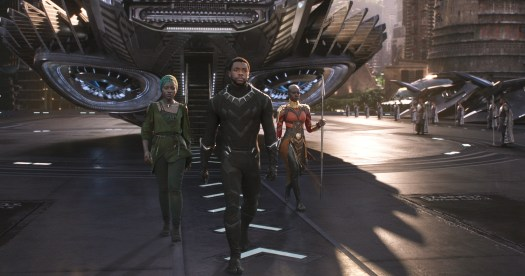 Image result for black panther still