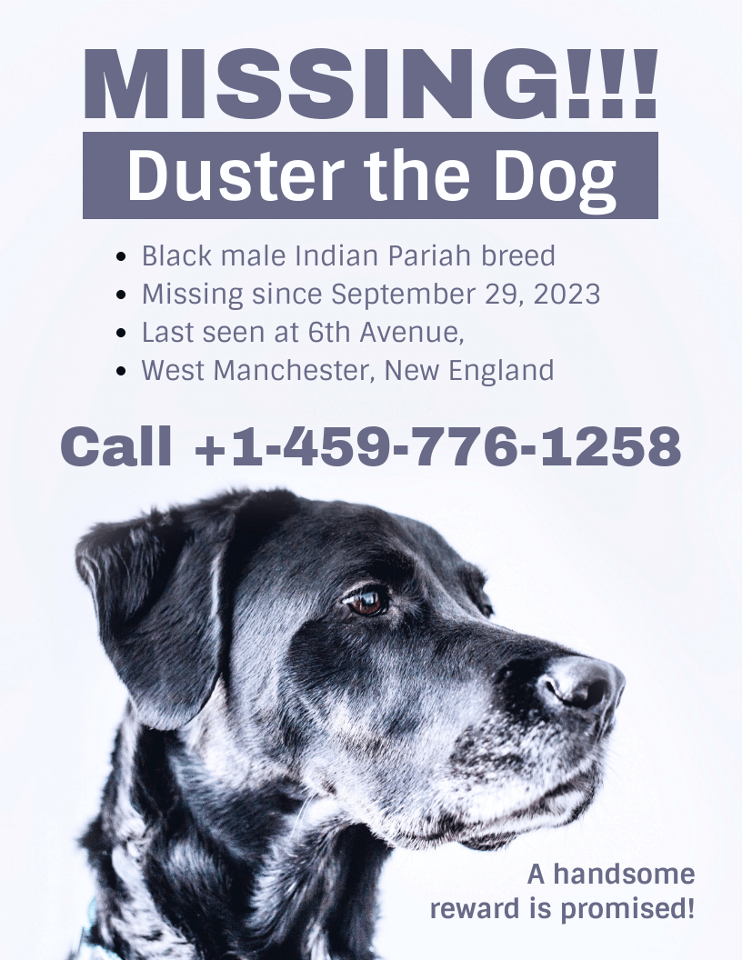 simple missing dog poster template