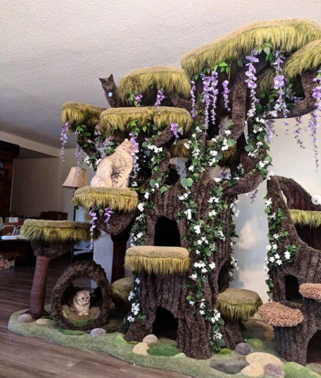 el árbol hace feliz a El gato Wolfie