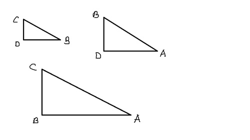 Help with this geometry/trigonometry common core question