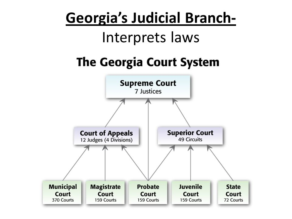 judicial branch court system diagram 2008 gsxr 600 wiring trial and appellate venn ukran 3 branches of govern by nancy lopez infographic